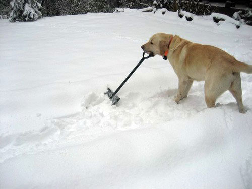 Do It Yourself Home Design: Avoiding Injury While Shoveling Snow
